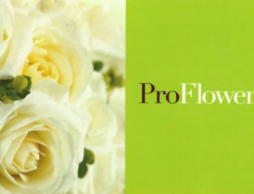 Proflowers Business Gift Guide